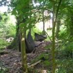 These are some of the hammocks we have put up.